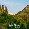 77  G Trail Views Rainier