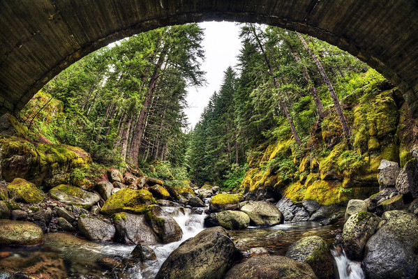 Mount Rainier National Park - Nickel Creek Bridge