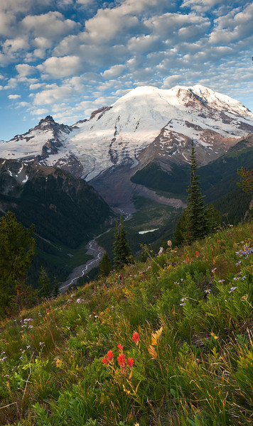 Mount Rainier and Emmons Glacier, Sunrise
