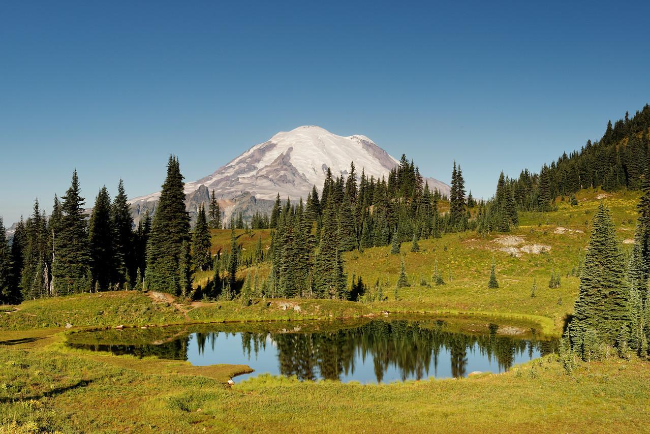 Mount Rainier from Naches Loop