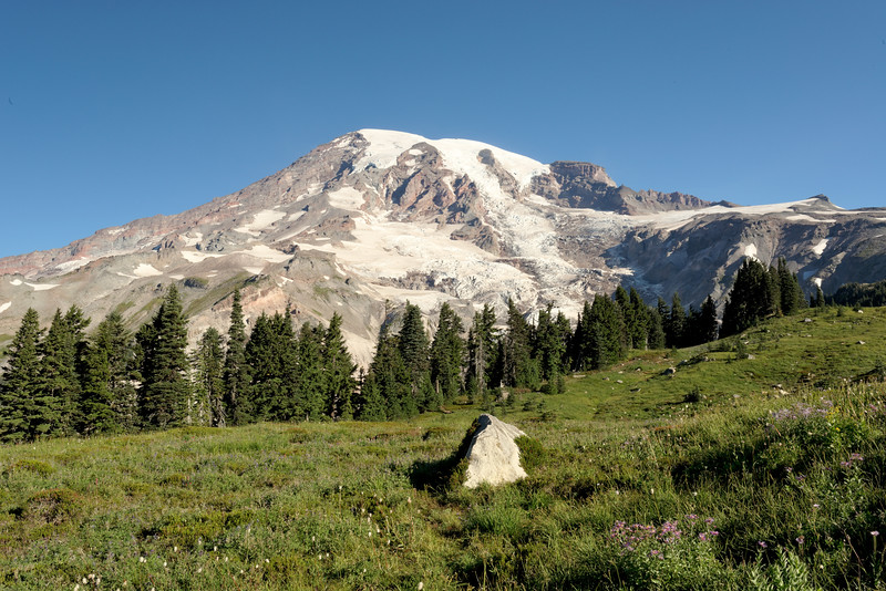 Subalpine Meadow