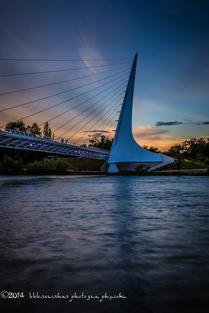 The Sundial Bridge (also known as the Sundial Bridge at Turtle Bay) is a cantilever spar cable-stayed bridge for bicycles and pedestrians that spans the Sacramento River in Redding, California, United States and forms a large sundial. It was designed by Santiago Calatrava and completed in 2004 at a cost of US$23,500,000. The bridge has become iconic for Redding.  The Sundial Bridge provides pedestrian access to the north and south areas of Turtle Bay Exploration Park, a complex containing environmental, art and history museums and the McConnell Arboretum and Gardens. It also forms the gateway to the Sacramento River Trail, a 35-mile-long trail completed in 2010 that extends along both sides of the river and connects the bridge to the Shasta Dam. Drift boats of fishermen are often seen passing beneath the bridge as they fish for salmon, steelhead and rainbow trout. In the distance, Mount Shasta is barely visible. Shasta Bally is visible to the West looking upstream the Sacramento.  he support tower of the bridge forms a single 217 foot (66 metre) mast that points due north at a cantilevered angle, allowing it to serve as the gnomon of a sundial; it has been billed as the world's largest sundial,although Taipei 101 and the associated sundial design of its adjoining park are much larger. The Sundial Bridge gnomon's shadow is cast upon a large dial to the north of the bridge, although the shadow cast by the tower is exactly accurate on only one day in a year – the summer solstice, June 20 or 21. The time is given as Pacific Daylight Time. The tip of the shadow moves at approximately one foot per minute so that the Earth's rotation about its axis can be seen with the naked eye.  The Sundial Bridge is a cantilever spar cable-stayed bridge, similar to Calatrava's earlier design of the Puente del Alamillo in Seville, Spain (1992). This type of bridge does not balance the forces by using a symmetrical arrangement of cable forces on each side of its support tower; instead, it uses a cantilever tower, set at a 42-degree angle[9] and loaded by cable stays on only one side. This design requires that the spar resist bending and torsional forces and that its foundation resists overturning. While this leads to a less structurally efficient structure, the architectural statement is dramatic. The bridge is 700 feet (213 m) in length and crosses the river without touching the water, a design criterion that helps protect the salmon spawning grounds beneath the bridge. The cable stays are not centered on the walkway but instead divide the bridge into a major and minor path.  The cable for the bridge totals 4,342 feet and was made in England. The dial of the sundial and a small plaza beneath the support tower are decorated with broken white tile from Spain. The bridge's deck is surfaced with translucent structural glass from Quebec, which is illuminated from beneath and glows aquamarine at night. The steel support structure of the bridge was made in Vancouver, Washington and transported in 40-foot sections by truck to Redding.  Plans for the Sundial Bridge began in the 1990s, when the city of Redding budgeted $3 million for a pedestrian bridge across the river. However, costs escalated after Calatrava's design was chosen in 1996. The bridge was completed in 2004, three years later than originally planned, at a cost of $23.5 million, with funding from the Redding-based McConnell Foundation.The expense was justified on the basis that it would increase tourism in the Redding area, which also features Shasta Dam as another architectural marvel, and it has been successful in that goal.