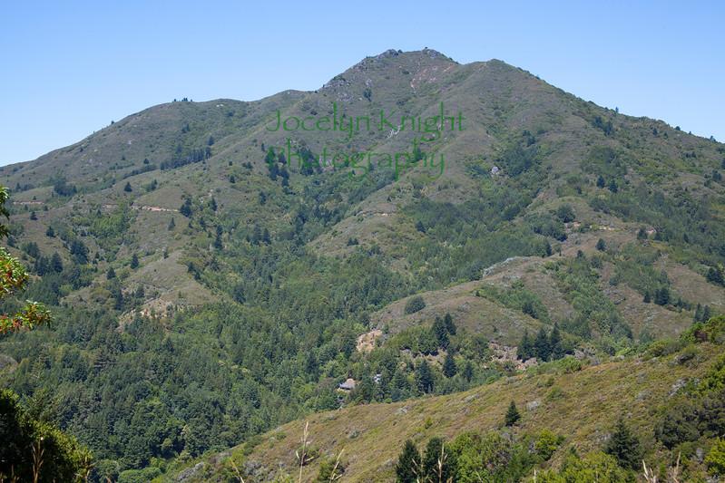 Mt. Tam