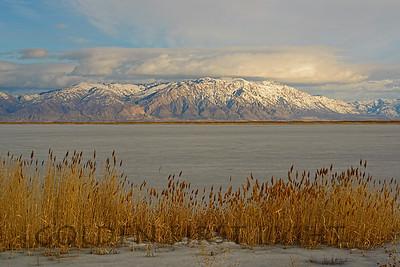 Wellsville Mountains from Bear River Bird Refuge, Utah