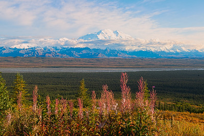 Mt Denali, Denali National Park