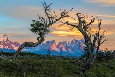 Paine Massif, Torres del Paine, Chile, Sunrise