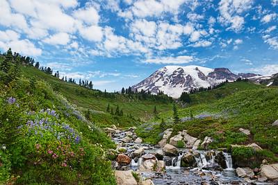 Mt Rainier and Edith Creek