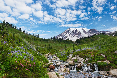 Mt Rainier and Edith Creek