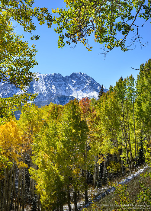 A snowy Eagles Nest peak framed by changing aspen trees