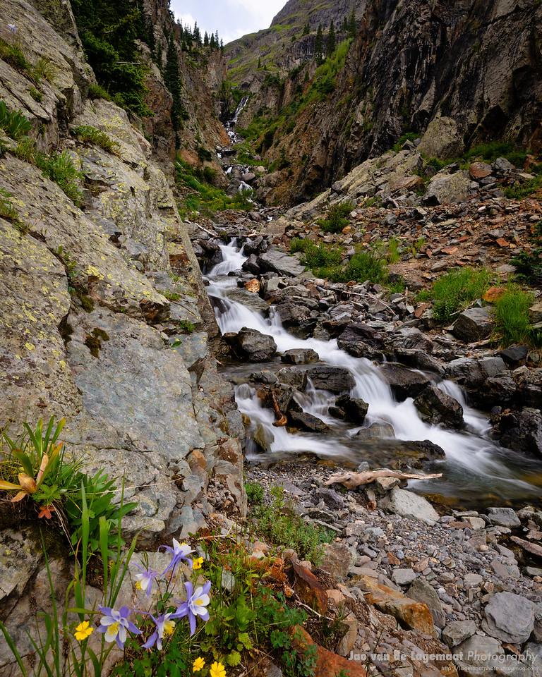 Columbine and waterfall