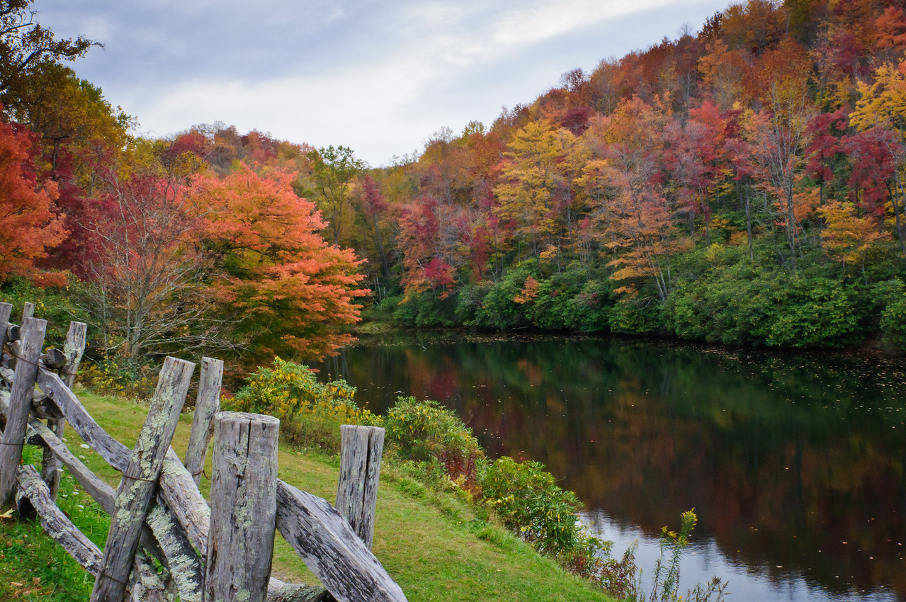 Sims Pond, October 10, 2011