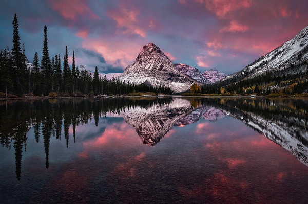 """Bathed in Pink"" - Montana"