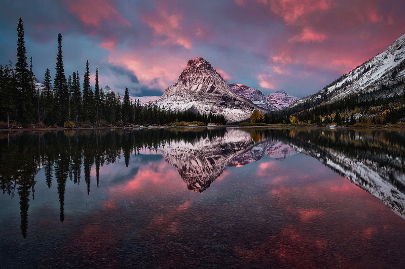 """""""Bathed in Pink"""" - Montana"""