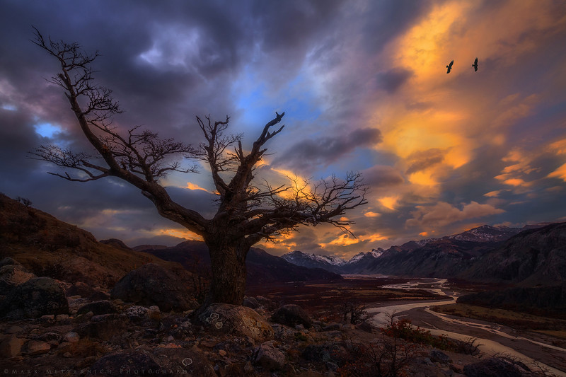 """""""Condors and Light"""" (Patagonia)"""