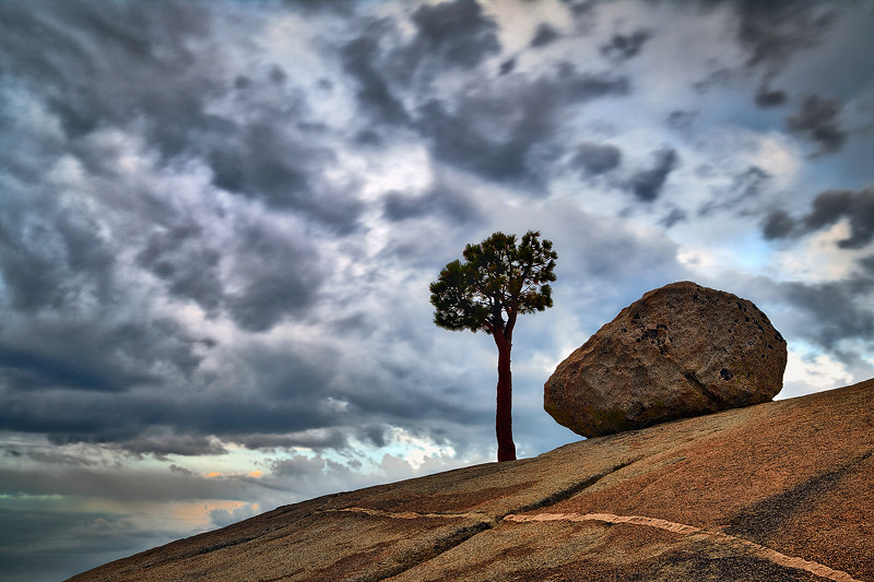 """Lone Tree and Rock 1"" - California"