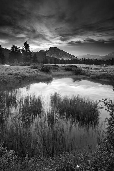 Platonic Dreams,<br /> High Sierra, CA