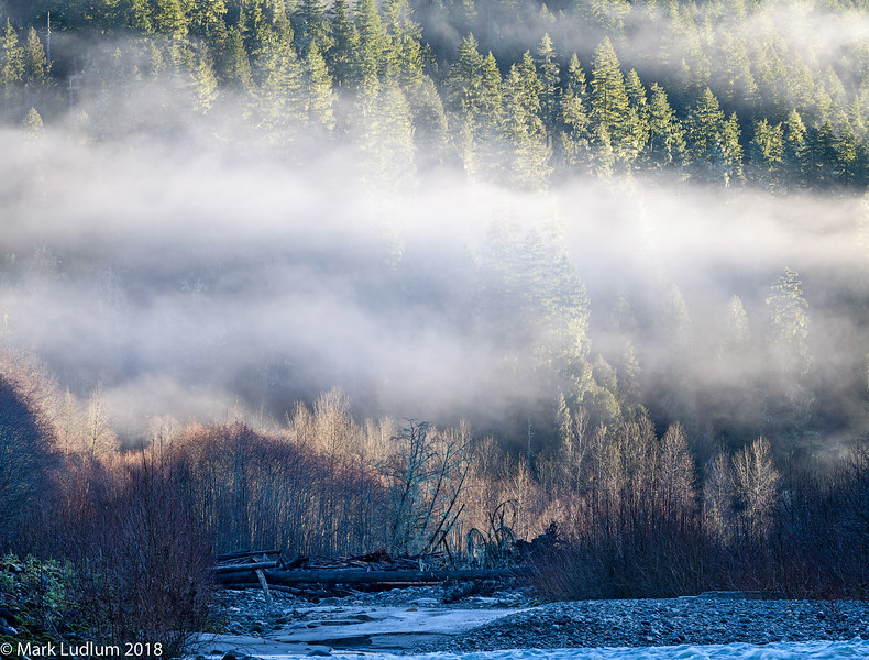 Sauk River Morning Fog 01-2018