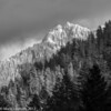 Mt Loop Highway Winter  BW 12-2012