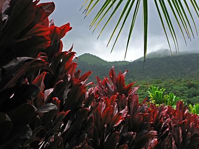 HI 2011 Maui 180