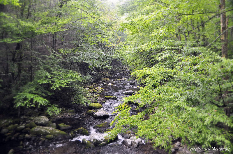 Smoky Mountains National Park<br /> Tennessee