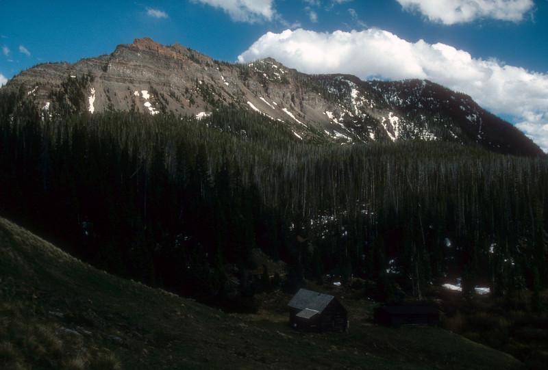 Tucked away cabin