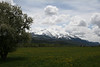 Spring meadows and snow on Sopris