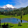 A revisit to Mt. Rainier on September 2, 2010.  This site has produced thousands of images but the clear day, the morning sun, new snow on Rainier and the greenery surrounding Lake Tipsoo this late in the summer made it special.