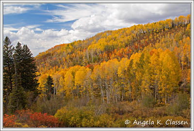 Buffalo Pass Rd., near Steamboat Springs, Colorado