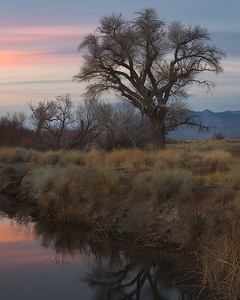 Owens Valley, Eastern Sierra