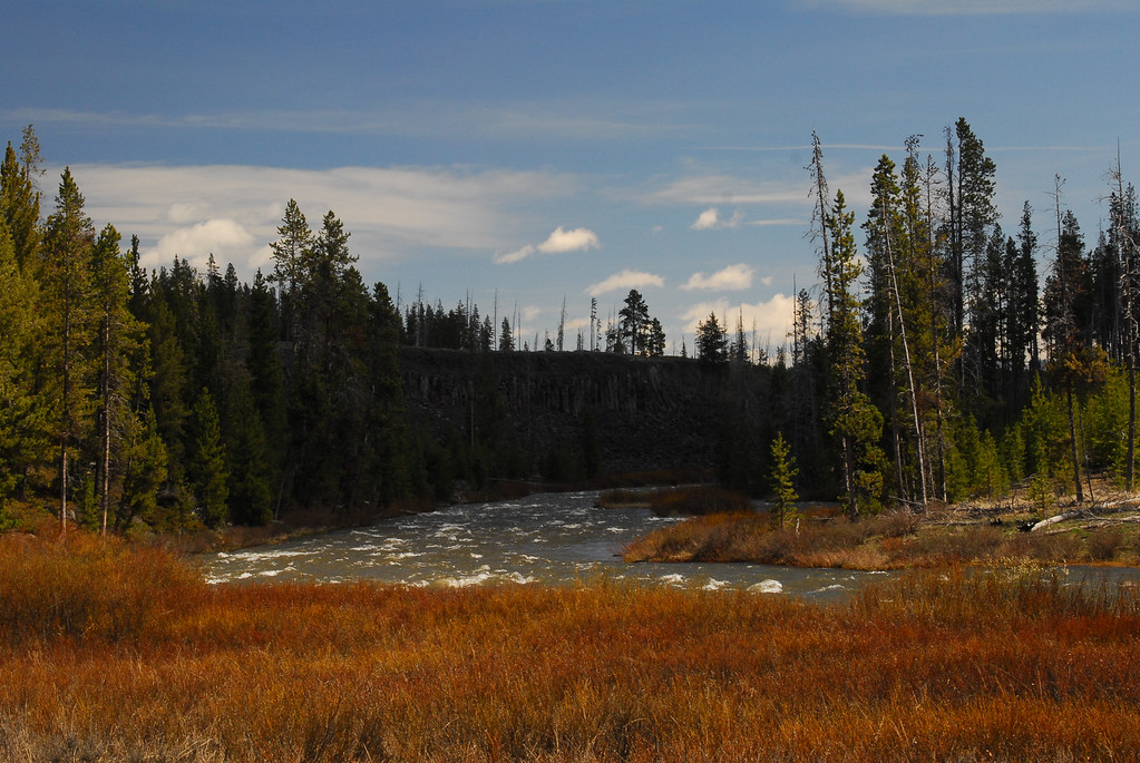 by Kym Puga Yellowstone