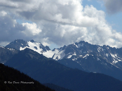 Views of the Olympic Mountain range from Hurricane Ridge.