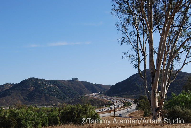 The Avocado Highway (I-15), looking south from CA state Hwy 76, between Bonsall and Pala, October 2009
