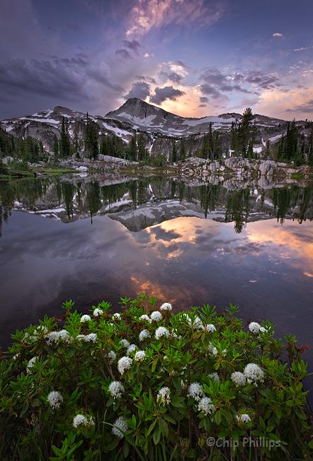 """""""Sunshine Lake Sunrise""""  Eagle Cap Mountain and wildflowers at Sunshine Lake. Eagle Cap Wilderness, Eastern Oregon"""