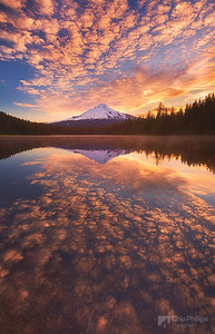 """Mackerel Sky, Trillium Lake""  Mackerel Sky is often seen as the first sign of an approaching weather front and brings summer storms and winter gales.  This Mackerel Sky is seen reflecting in Trillium Lake at sunrise"