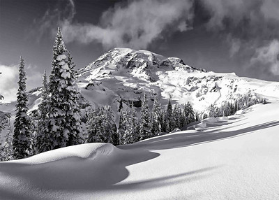 """Alta Vista"" Nothing brings out subtle textures and shading in an image like black & white...here, at 7,000' on the Alta Vista trail, Mt. Rainier emerges from a winter storm in all her majesty."