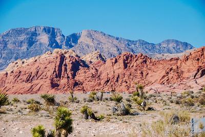 Redder Rocks