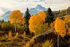 Autumn Sneffels