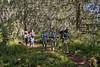 Rainforest Trekking 3754