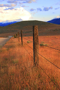 Old Fenceline along Slough Road in Siskiyou County, CA