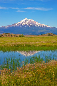 Seasonal Pond and Mt Shasta along Louie Road, Siskiyou County, CA