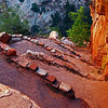 Steppin` Up, Angels' Landing Hike Zion National Park