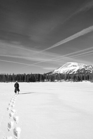 Lone HIker, Mammoth Lakes, CA - This was photographed while snowshoeing through the Mammoth during Christmas.