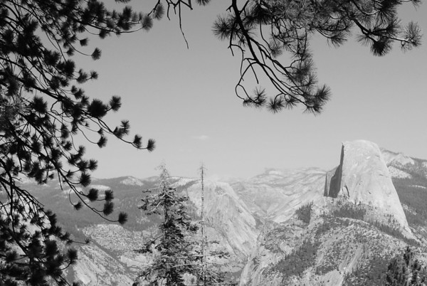 Framed Half Dome, Yosemite National