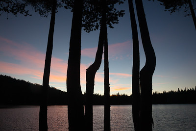 Twilight Silhouettes 8053