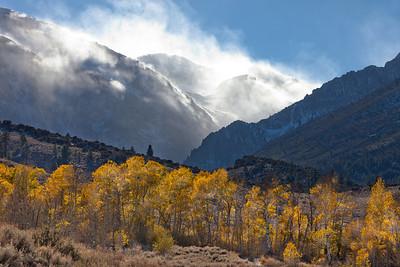 Sierra Snow Blower 2185