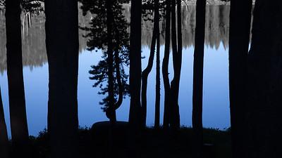 Serene Blue Silhouettes 7812cs