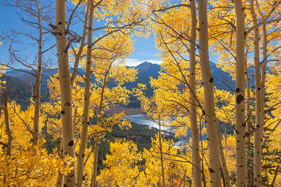 Rocky Mountain Fall 1045
