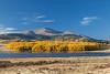 Mt Silverheels Autumn 1067