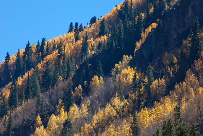 Tennessee Pass Cascade
