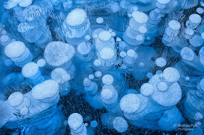 """Blue Bubbles"""